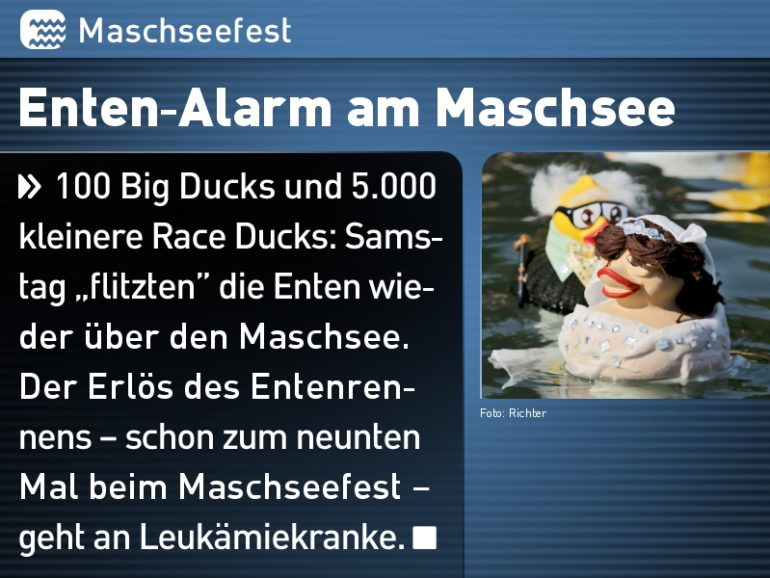Enten-Alarm am Maschsee